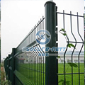 Garden galvanized 3D curved welded wire mesh